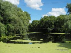 Озеро у реки Стрижень
