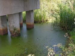Железнодорожный мост через канаву