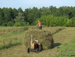 Заготовка травы на поле
