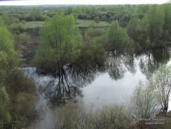 Зеркальное отражение при разливе