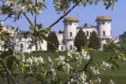 Дворец Румянцева-Задунайского в селе Вишенки